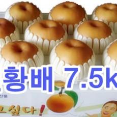 원황배 선물세트7.5kg (10과)