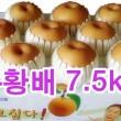 추황배 선물세트7.5kg (~8과)