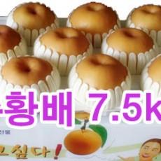 추황배 선물세트7.5kg (9과)