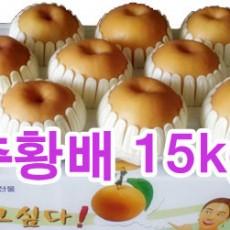 추황배 선물세트15kg (21~25과)